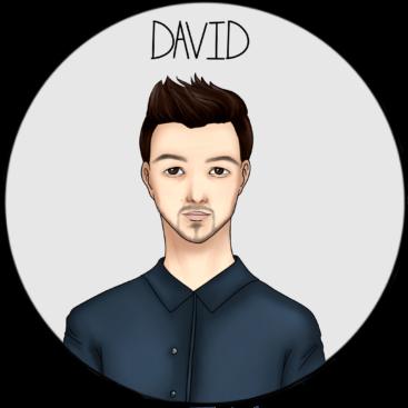 David1 367x367 - L'équipe